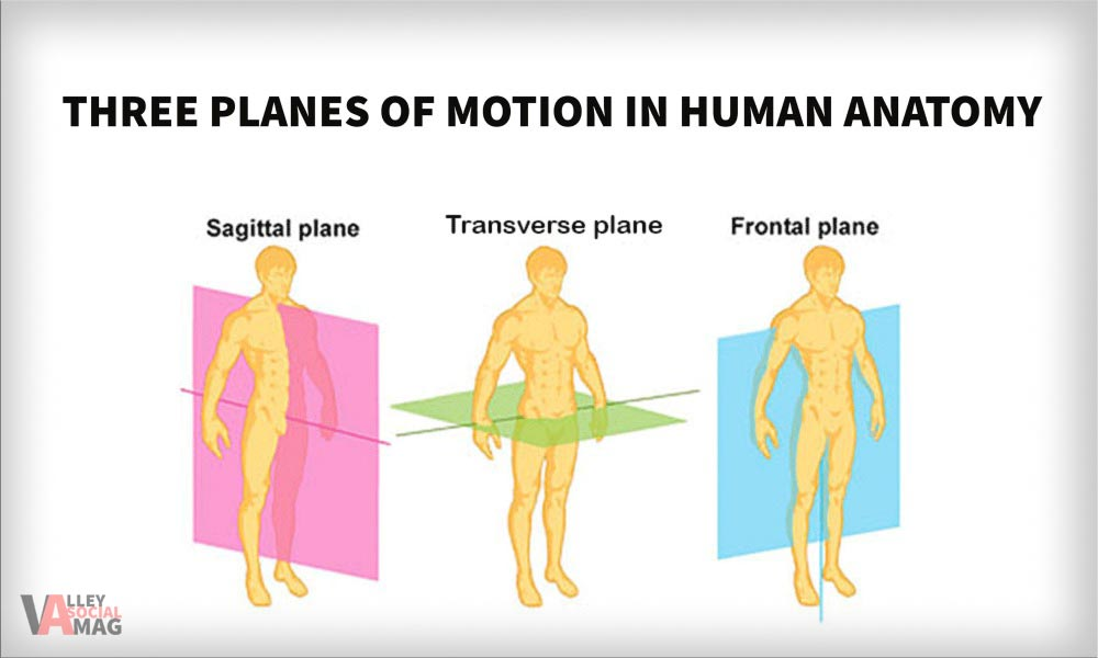 3 Planes of Motion